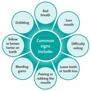 dental-disease-common-signs_en