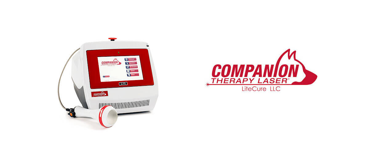 Image of the Companion Therapy Laser System
